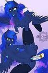 Night With Luna