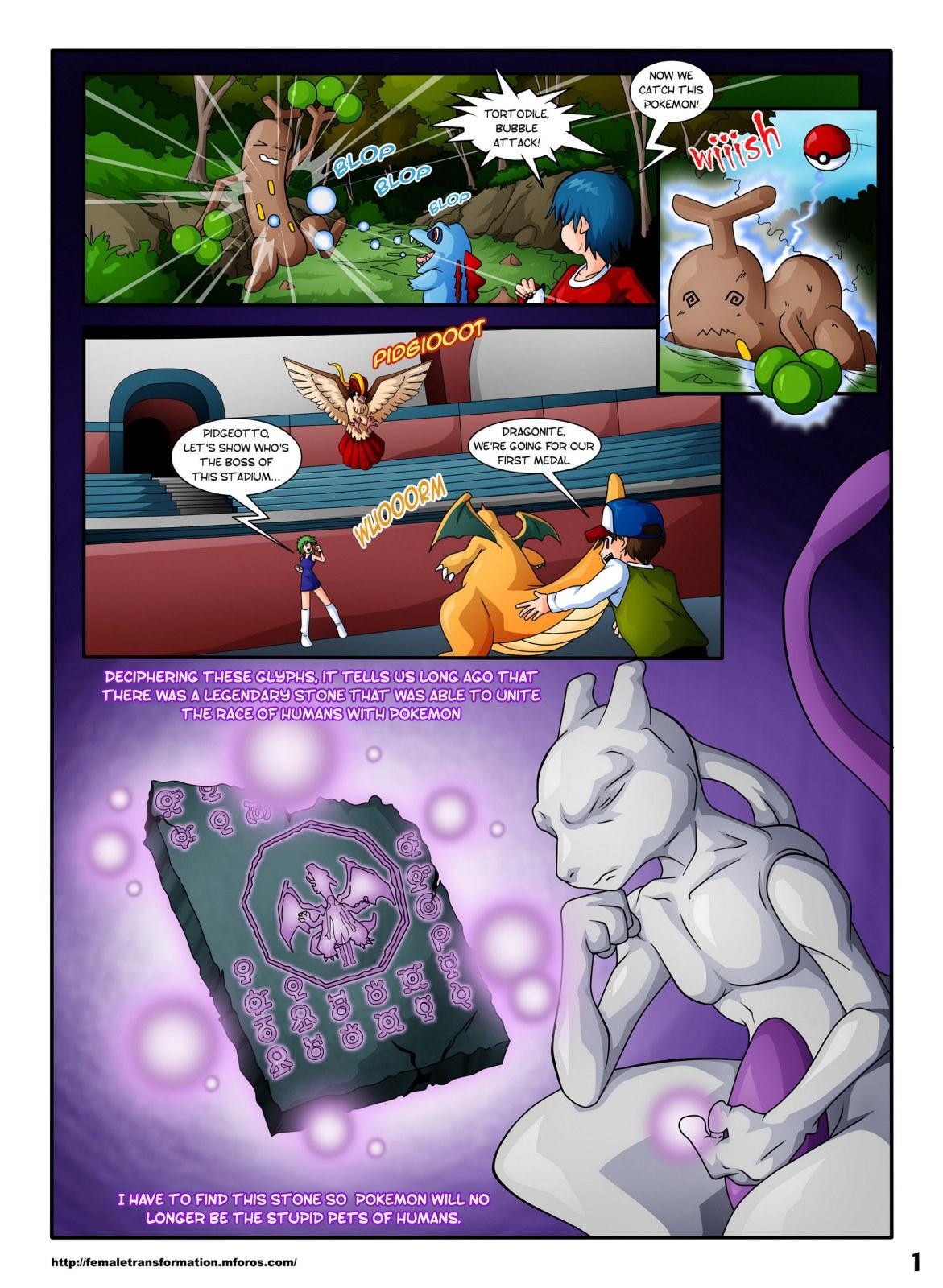 Pokemon- Pokemaidens