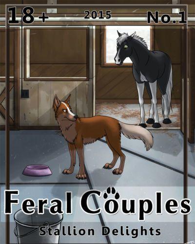 แฟเรวเจ้า couples: ม้า Delights